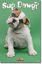 Puppy Sup Dawg Poster Art Print 22x34 T6048