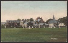 More details for devon tiverton. cricket. cricket match on the green. c1910 frith postcard