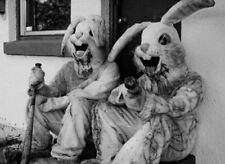 Vintage Bloody Bunnies Photo Bizarre Odd Freaky Strange