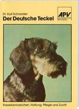 Der deutsche Teckel / Dackel - Rassekennzeichen Haltung Zucht (Dr.Kurt Schneider