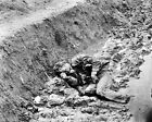New 8x10 Civil War Photo: Confederate Casualty in Trench at Petersburg, Virgina
