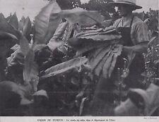1941  --  LA RECOTE DU TABAC  DANS LE DEPARTEMENT DE L ISERE   3C774