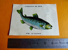 CHROMO 1939 CASINO POISSONS DE MER N°49 LE SAUMON