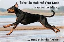 DOBERMANN - A4 Metall Warnschild SCHILD Hundeschild Alu Türschild - DBM 05 T12