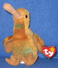 TY BEAK the KIWI BIRD BEANIE BABY - MINT with MINT TAG