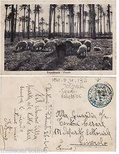 #TRIPOLITANIA: 1941 P.M. 132 TOBRUK- SQUADRA PANETTIERI