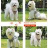 Non-pull Dog Harness Reflective Adjustable Small Medium Mesh Jacket Pet Vest UK