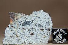 NWA 8362 HED Achondrite Howardite Meteorite 5.6 gram part slice