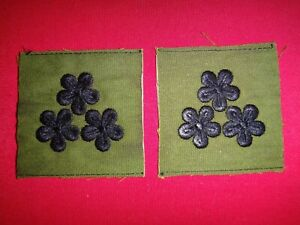 """Vietnam War Pair Of ARVN Army CAPTAIN Rank """"DAI UY"""" Subdued Collar Patches"""