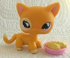 Authentic Littlest Petshop #855 European Kitty Cat Chat Européen + Accessory TBE