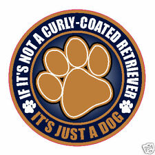 "Not A Curly-Coated Retriever Just A Dog 5"" Sticker"