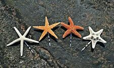 Cute Starfish Mermaid Bobby Pins Hair Clip Beach Nautical Handmade Accessories