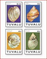 TUV9402 Shells 4 pcs