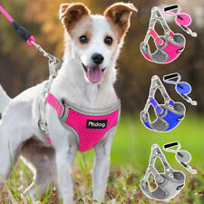 Step In Dog Harness and Leash Nylon Reflective Mesh Padded Adjustable Chihuahua