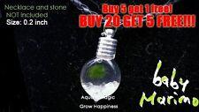 Baby Marimo Moss Ball-live aquarium plant java fish tank O for Jewelry making