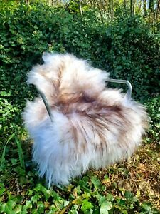 XXXL Huge Fluffy Genuine Icelandic Brown Wolftip Sheepskin Rug - 125cm by 80cm