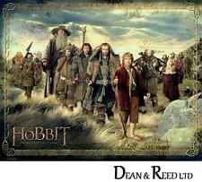 The Hobbit (The Company) - Mini Poster - 40cm x 50cm MPP50485 - M106
