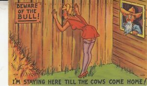 Vintage  Postcard Sexy Lady with stockings and  Sexist peeping Farmer