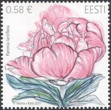 Estonia 2011 Chinese Peony/Flowers/Plants/Nature/Horticulture 1v (ee1208)