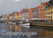 "COPENHAGEN DENMARK FRIDGE COLLECTOR'S SOUVENIR MAGNET 2.5"" X 3.5"""