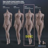 1/6th Phicen S09C Female Figure Body Model Toy TBLeague Suntan Large Breast