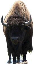 SC-59 Büffel Bison 135cm x 115cm Aufsteller Pappaufsteller Pappfigur Figur