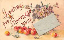 Moorhead Minnesota~Embossed Cherries & Blossoms Greetings c1907 Postcard