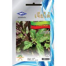 Holy basil(Red leaves) seeds Thai Herb Kaprao 750 Seeds Ocimum Tulsi Sanctum