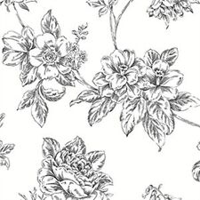 Black Floral Toile on White Background  Wallpaper-Double roll