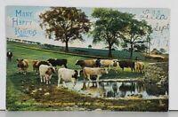 Raphael Tuck Pleasant Pastures, The Milky Drove, Cows Grazing Postcard J19