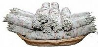 1 Weisser Salbei Räucherware gross ca.80 - 90 Gramm Smudge Stick Bündel Schutz