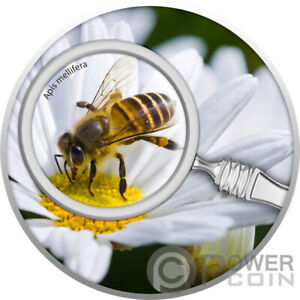 HONEY BEE The Secret Garden Silver Coin 500 Francs Cameroon 2020
