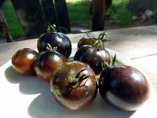 Midnight Tiger - striking and boldly-flavored new variety from J&L Gardens