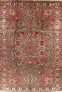 Vintage Traditional Bakhtiari Oriental Hand-Knotted Area Rug Wool Carpet 8x12