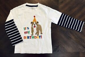 Gymboree toddler white Birthday T-Shirt 4T  long sleeves