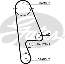 Gates Timing Cam Belt 5480XS Fits Honda Accord (2001-02) Odyssey (1997-99)