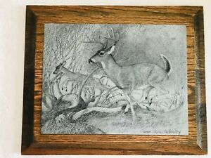 Vintage Charles Beckendorf 1965 Nature Deer Metal Etching, Signed By Artist