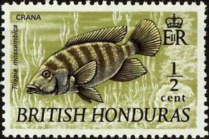 BRITISH HONDURAS - 1971 - Mozambique Tilapia (Tilapia mossambica) - Sc. #235