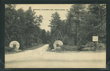 MD Federalsburg ROTOGRAVURE 1920's ENTRANCE to CHAMBERS PARK  by Mayrose Co.