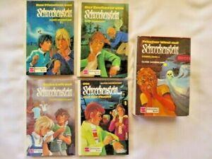 5 Burg Schreckenstein Bücher mit 7 Geschichten 4-14-21-22-Raub-Gespenst-Spione