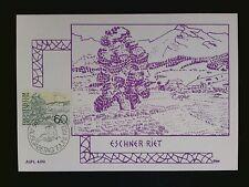 LIECHTENSTEIN MK 1973 585 FREIMARKE MAXIMUMKARTE CARTE MAXIMUM CARD MC CM c8123