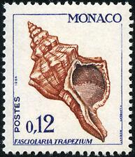 "MONACO N° 539B ""COQUILLAGE FASCIOLARIA TRAPEZIUM 12 C"" NEUF x TB"