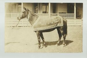 RPPC 1910 ADVERTISING Trick BOBBY THE EDUCATED HORSE Trained Circus Sideshow
