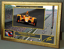 "Fernando Alonso Indy 500 Gold Framed Canvas Signed Print ""Great Gift  Souvenir"""