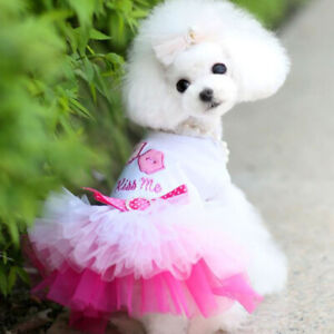 Pet Puppy Dog Birthday Cake Dress Clothes Doggie Lace Tutu Skirt For Chihuahua