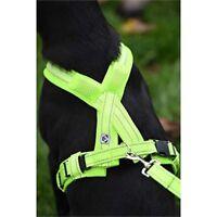 Masta Woofmasta Hi-viz Flashing Dog Harness Large Flourescent Yellow