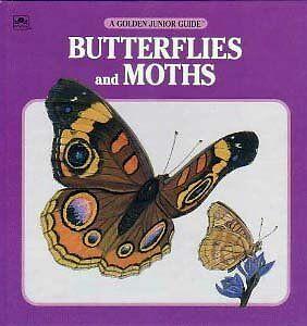 Butterflies,moths Jr. Guide (A Golden Junior Guide) by Golden Books