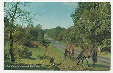 Postcard, J Salmon, The Bournemouth Road, New Forest, 1967