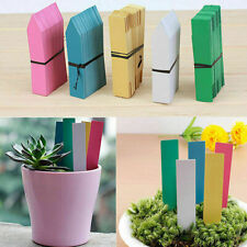 Garden Plant Pot Markers Plastic Stake Tags Yard Court Nursery Label Deco G0O9