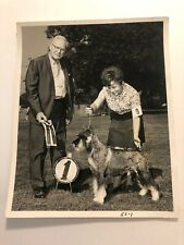 1970s Vintage Black & White Dog Show Standard Schnauzer Press Photo Kennel Club